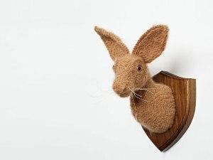 hare-head